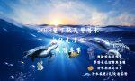2018 墾丁秋天學潛水-水就是清啦-秋潛專案