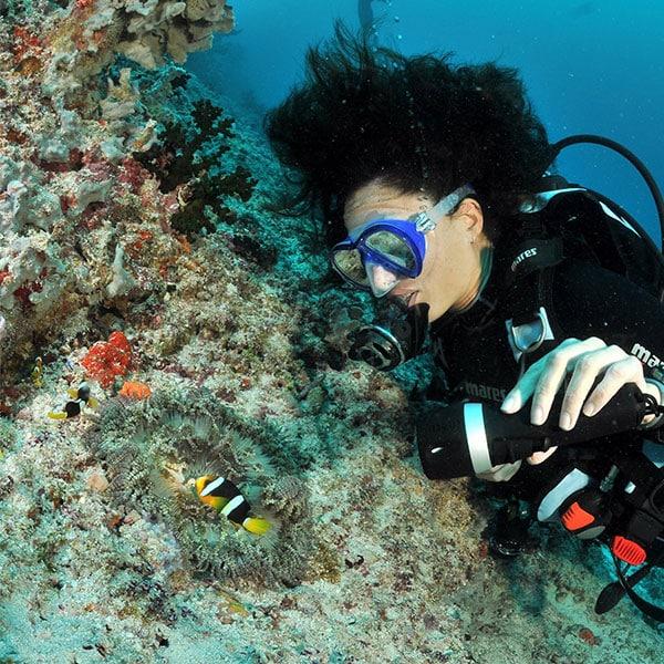 I-want-diving 環礁潛水 首頁