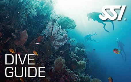 dive-leader-DG SSI潛水領導級