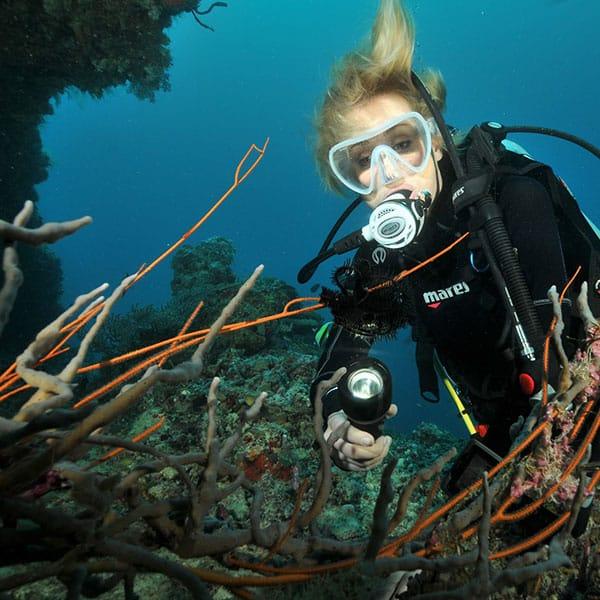 潛水課程-進階潛水員