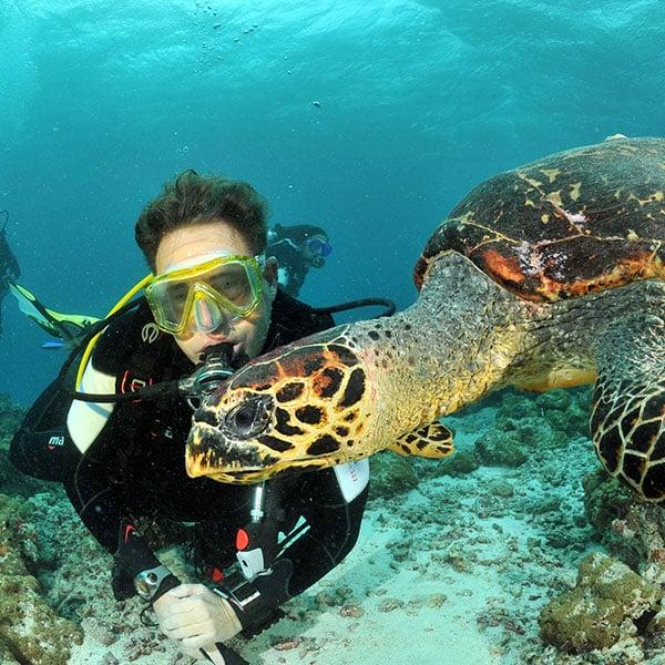 潛水課程-開放水域潛水員