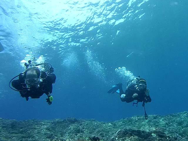蘭嶼潛水旅遊