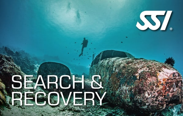 specialty-search-recovery 更多專長..